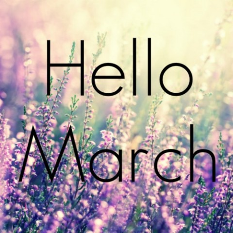 Hello-March-Images-3-480x480